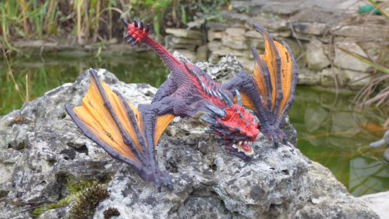 SCHLEICH : mes chevaux, mes dragons et autres figurines P1250629