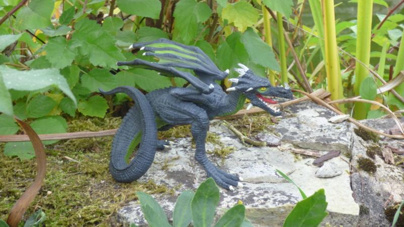 SCHLEICH : mes chevaux, mes dragons et autres figurines P1250630