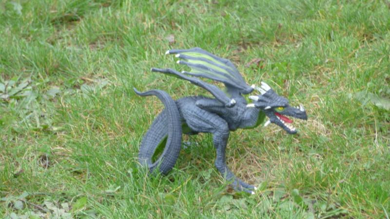 SCHLEICH : mes chevaux, mes dragons et autres figurines P1250634