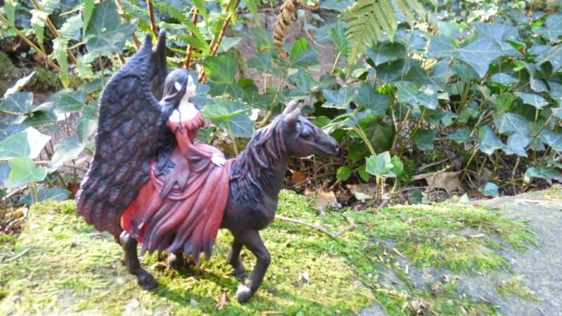 SCHLEICH : mes chevaux, mes dragons et autres figurines P1250713