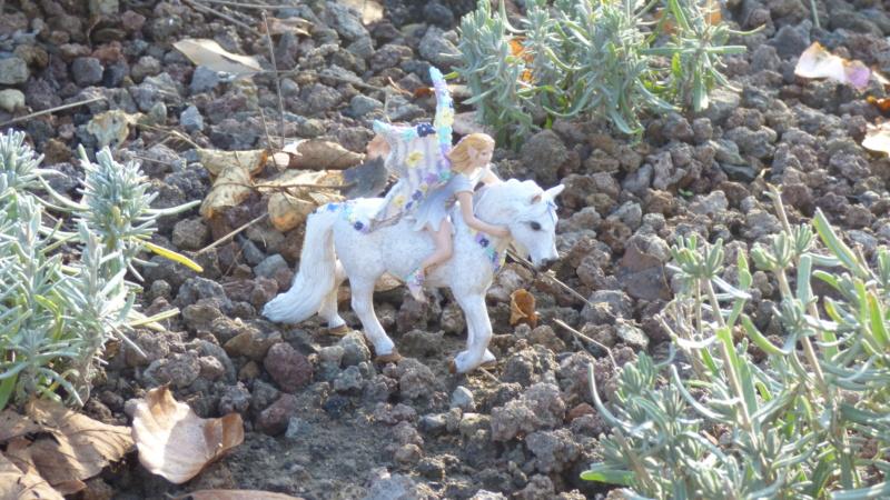 SCHLEICH : mes chevaux, mes dragons et autres figurines P1250741
