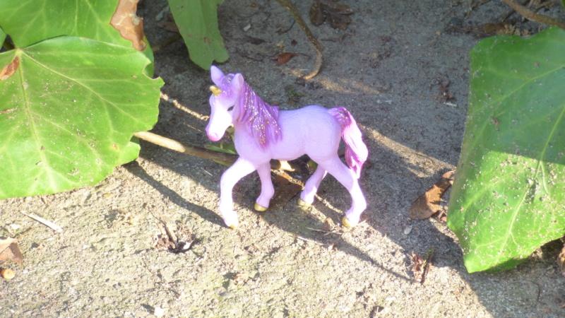 SCHLEICH : mes chevaux, mes dragons et autres figurines P1250752