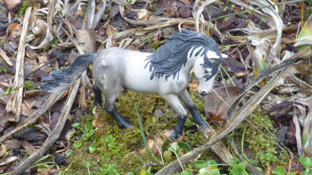 SCHLEICH : mes chevaux, mes dragons et autres figurines P1250932