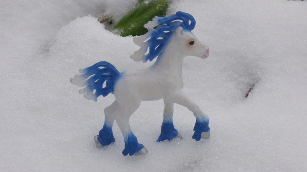 SCHLEICH : mes chevaux, mes dragons et autres figurines P1260150