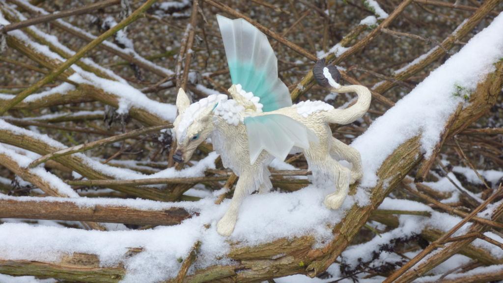 SCHLEICH : mes chevaux, mes dragons et autres figurines P1260152
