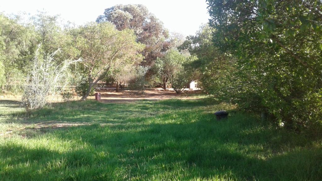 [Maroc Camp/Dernières nouvelles] Camping de la Vallée Abaynou 20181010