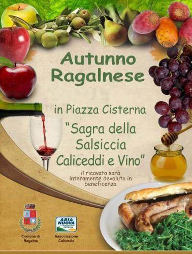 """""""Sagra della Salsiccia Caliceddi e Vino"""" Ventesima edizione Sagra_13"""