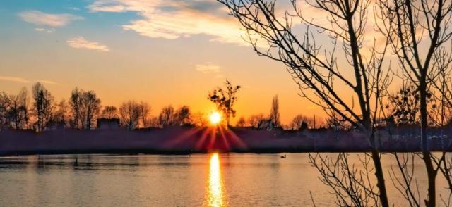Crépuscule sur l'étang... Berge10