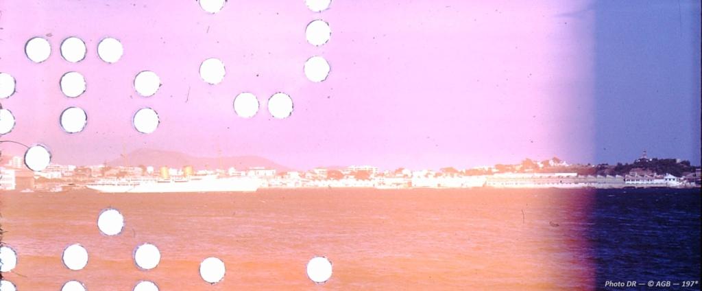 Marine turque - Page 2 Dahlia10