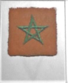 4°Division Marocaine de Montagne  Dscn5749