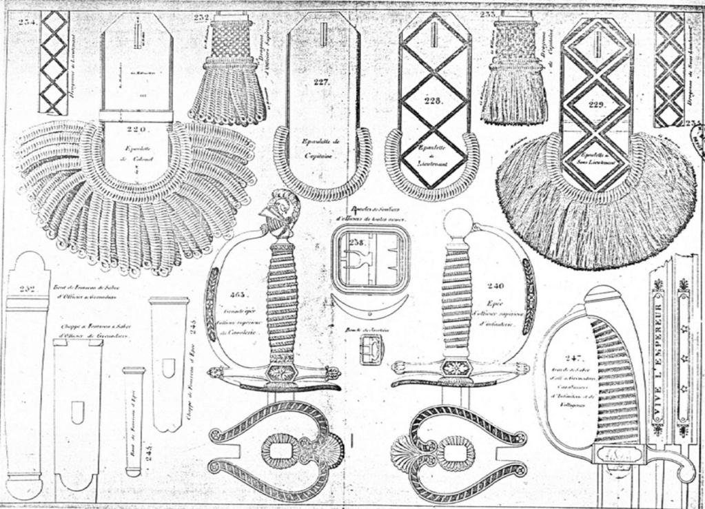 Le point sur les épées  de gendarmerie : épées d'officier Image156