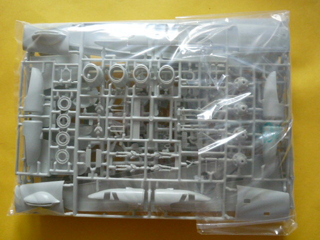 [Revell] Consolidated PB4 Y2 Privateer P1030150