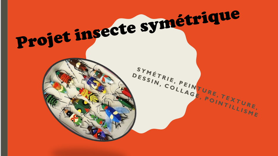 Insecte symétrique (premier cycle)  Insect11