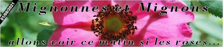 Planete-des-rosiers.forumactif.org