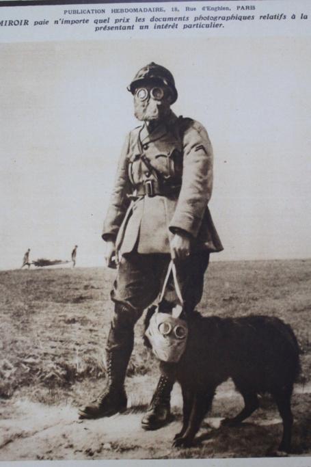 Centenaire 1914-1918 . Img_3052