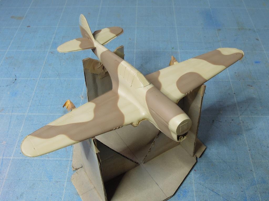 P-40F -  1/72 Special Hobby - Tunisie 1943 C1110