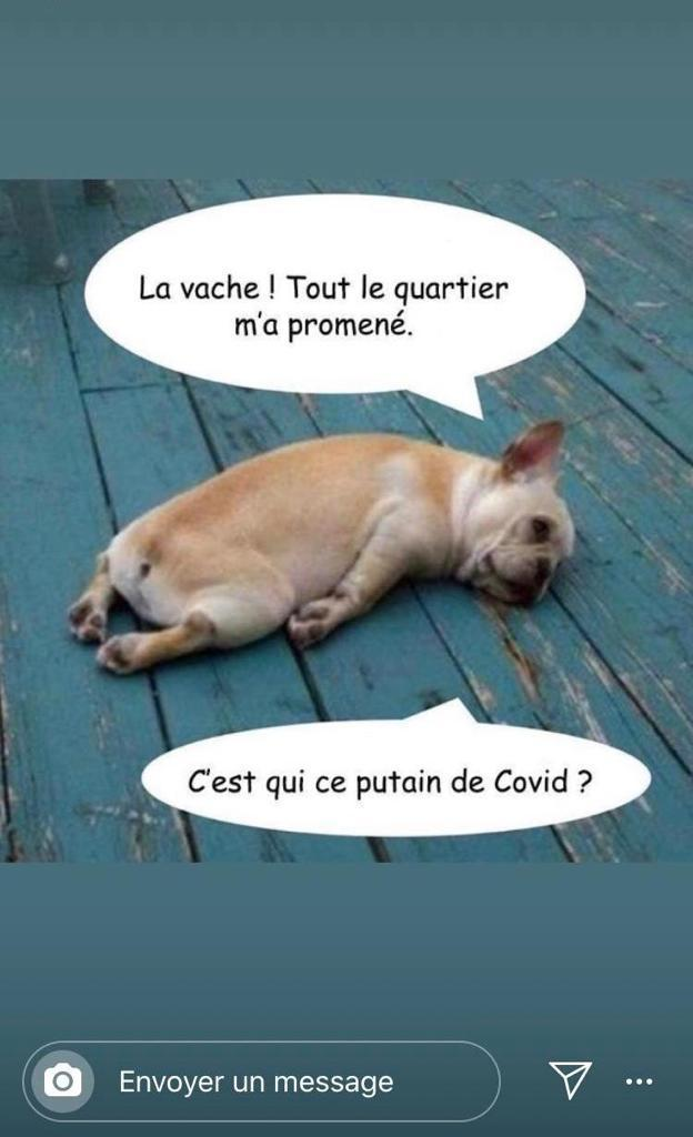 humour - Page 34 N210