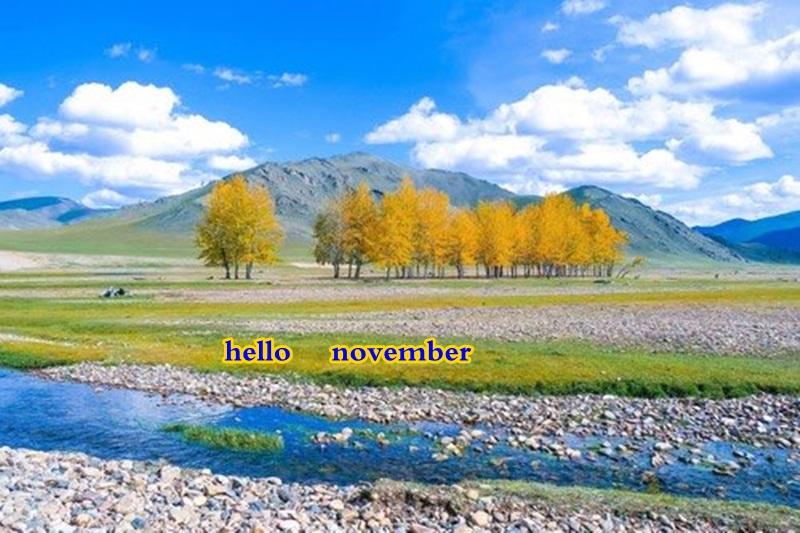 hello november Dq19i_10