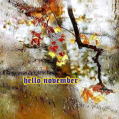 hello november Dq20uw10