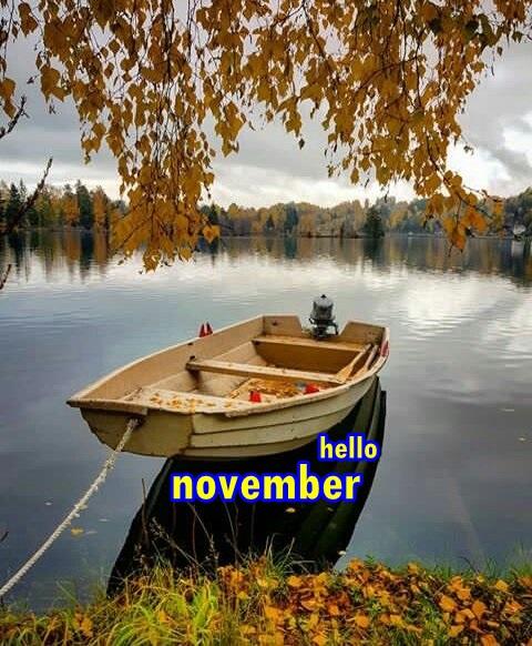 hello november Dq5v4q10