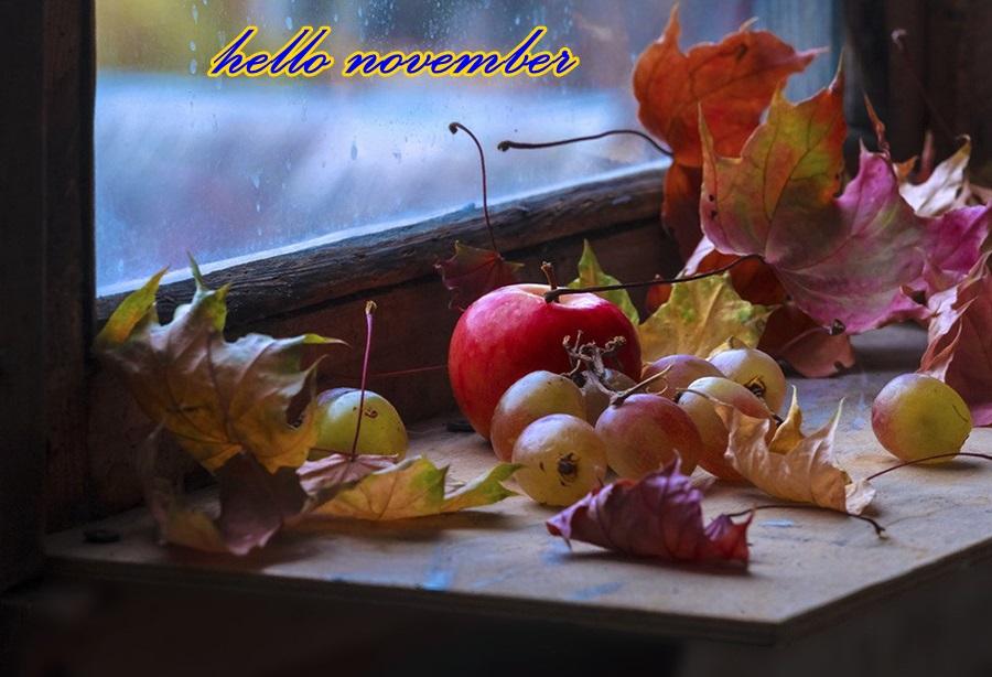 hello november Dqtrsv10