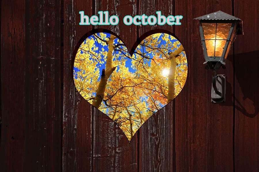 hello october Gde-kr10