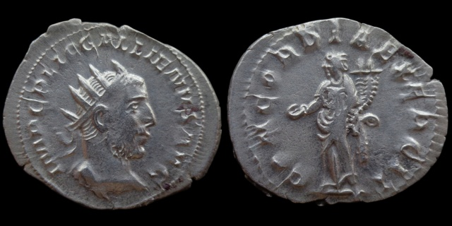 Nouvelles acquisitions (IIIème siècle) - Page 2 Concor10