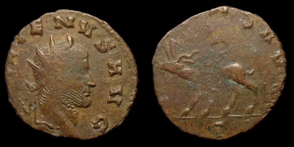 Nouvelles acquisitions (IIIème siècle) Gallie13