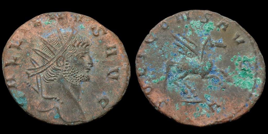 Nouvelles acquisitions (IIIème siècle) Pegase10