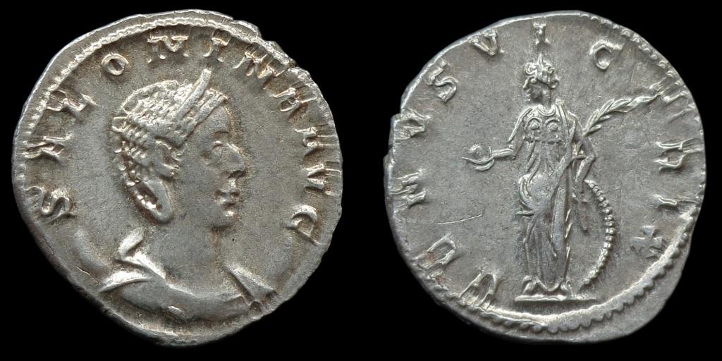 Nouvelles acquisitions (IIIème siècle) Saloni10