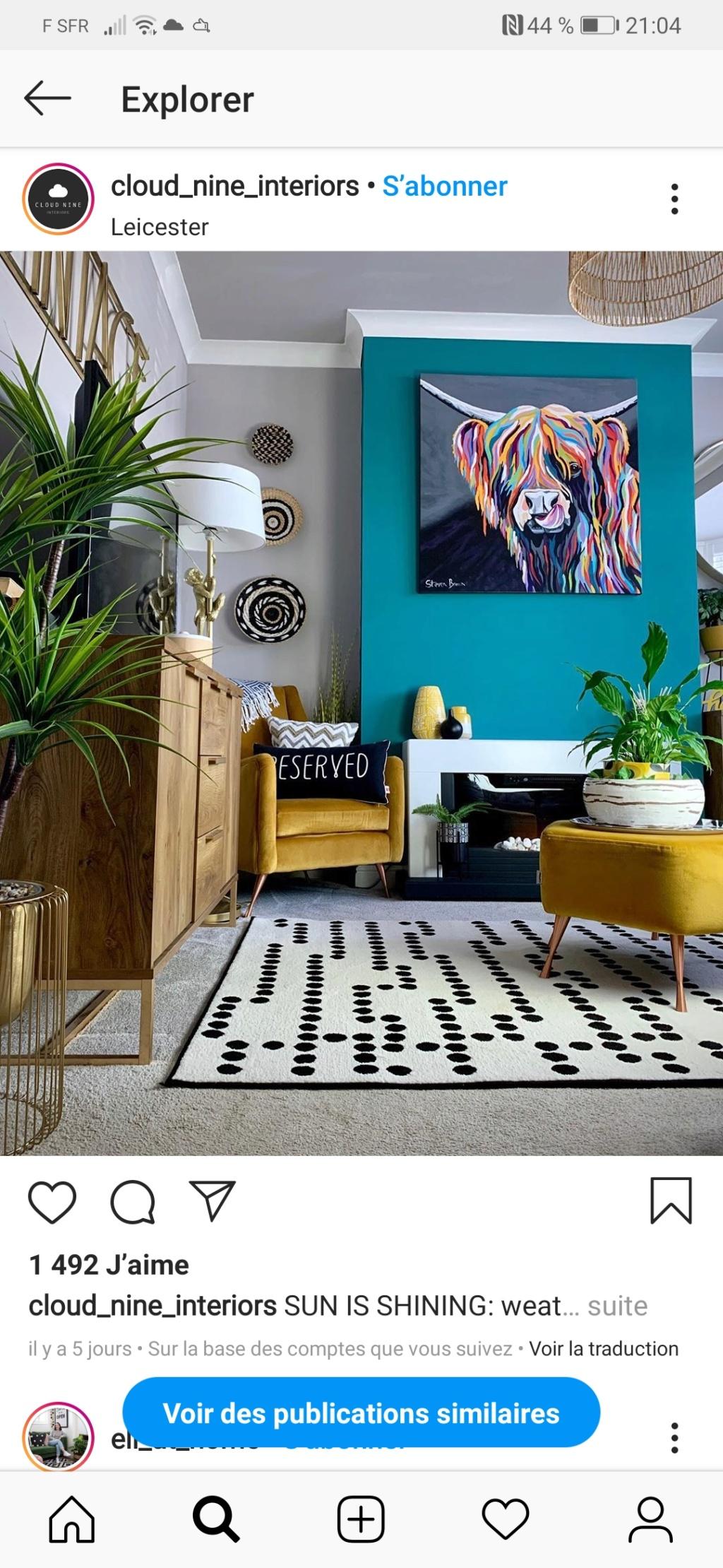 Association des couleurs vives (canapé ,murs) avec un sol gris-terre Screen12