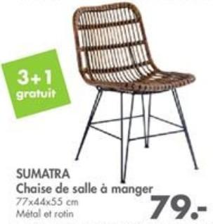 chaises en rotin - un effet mode  Sumatr10