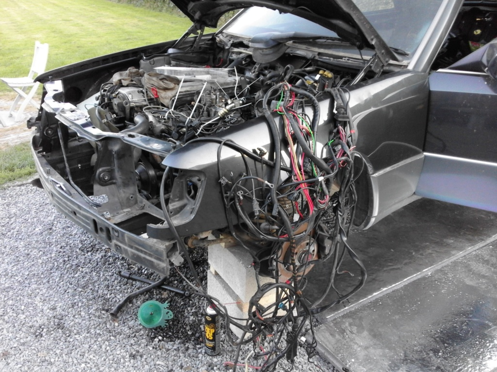 W124 20160910