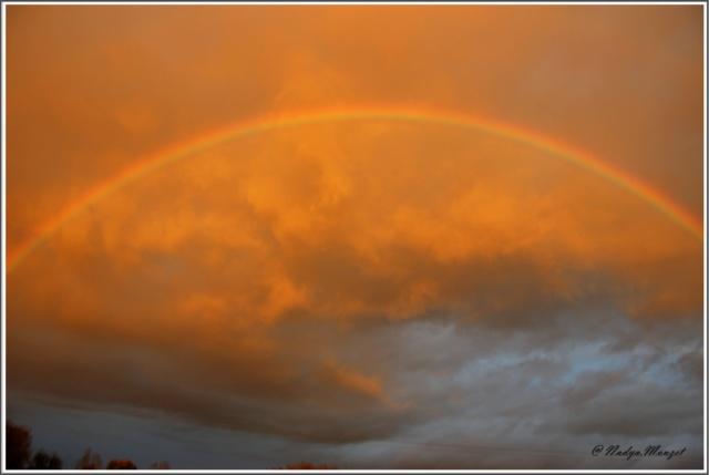 Les arc en ciel Cadrei54