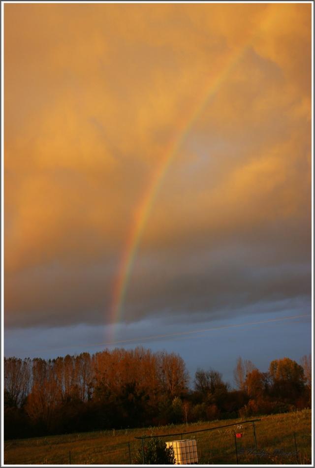 Les arc en ciel Cadrei56