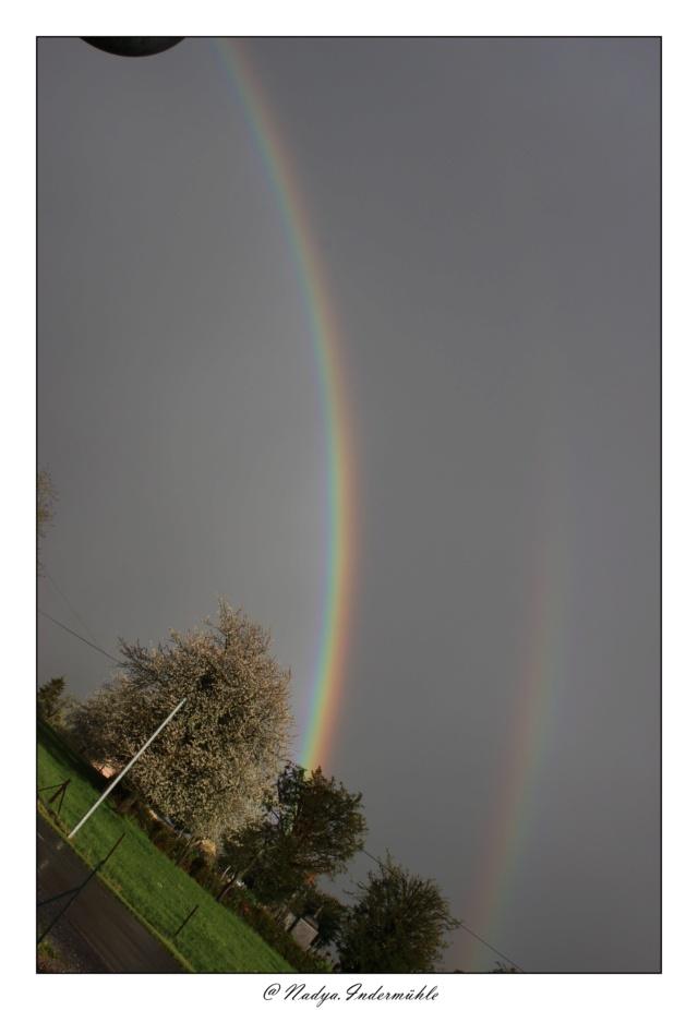 Les arc en ciel Cadrim28