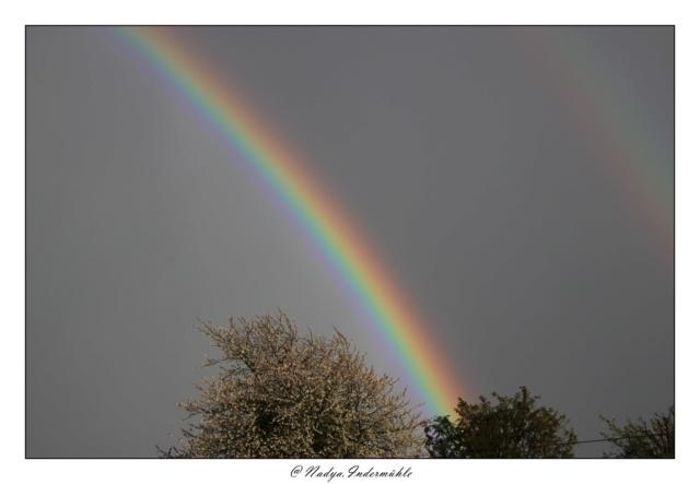 Les arc en ciel Cadrim29