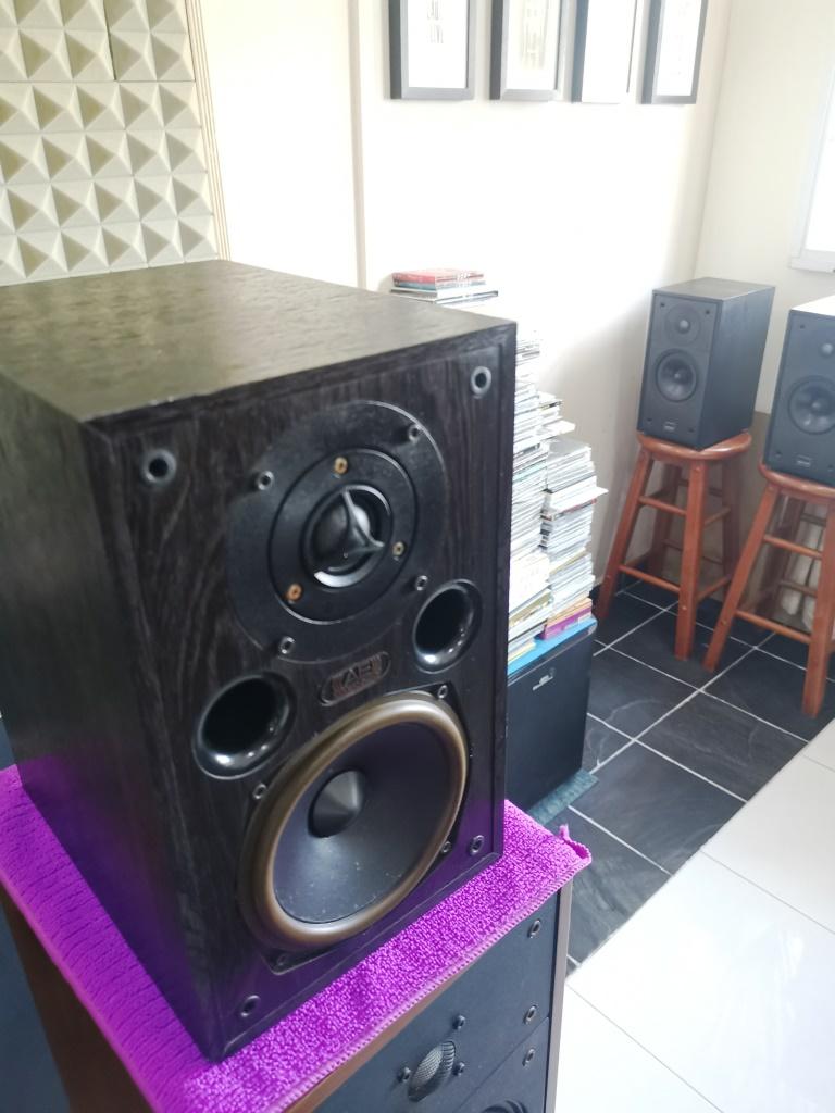 Acoustic Energy AE100 Bookshelf Speakers (used) Img_2166