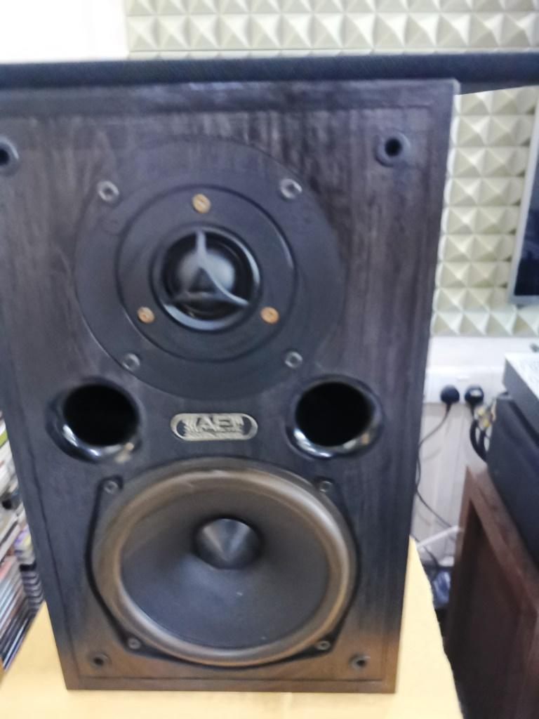 Acoustic Energy AE100 Bookshelf Speakers (used) Img_2167