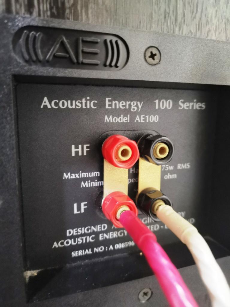 Acoustic Energy AE100 Bookshelf Speakers (used) Img_2171
