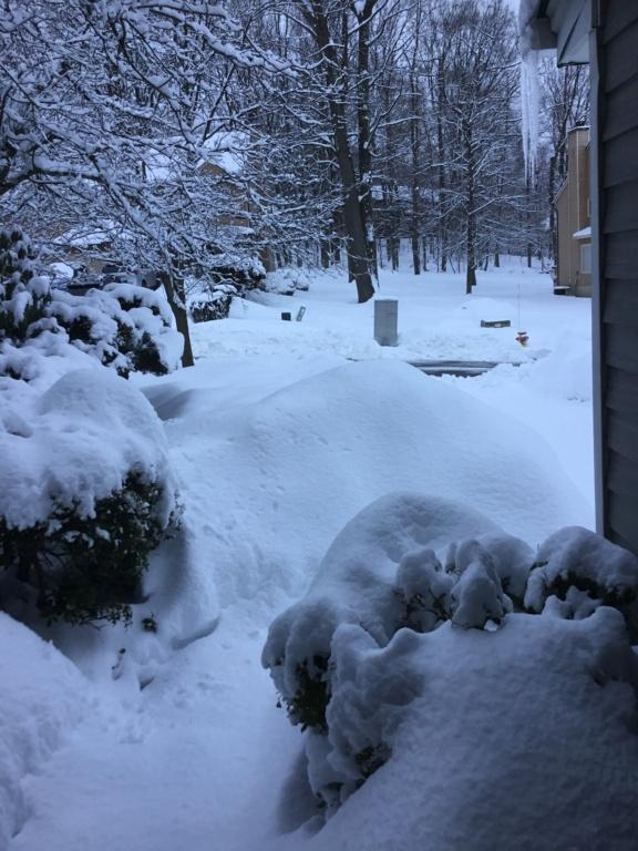 Monday's N&W Snowfall - Page 7 A6864e10