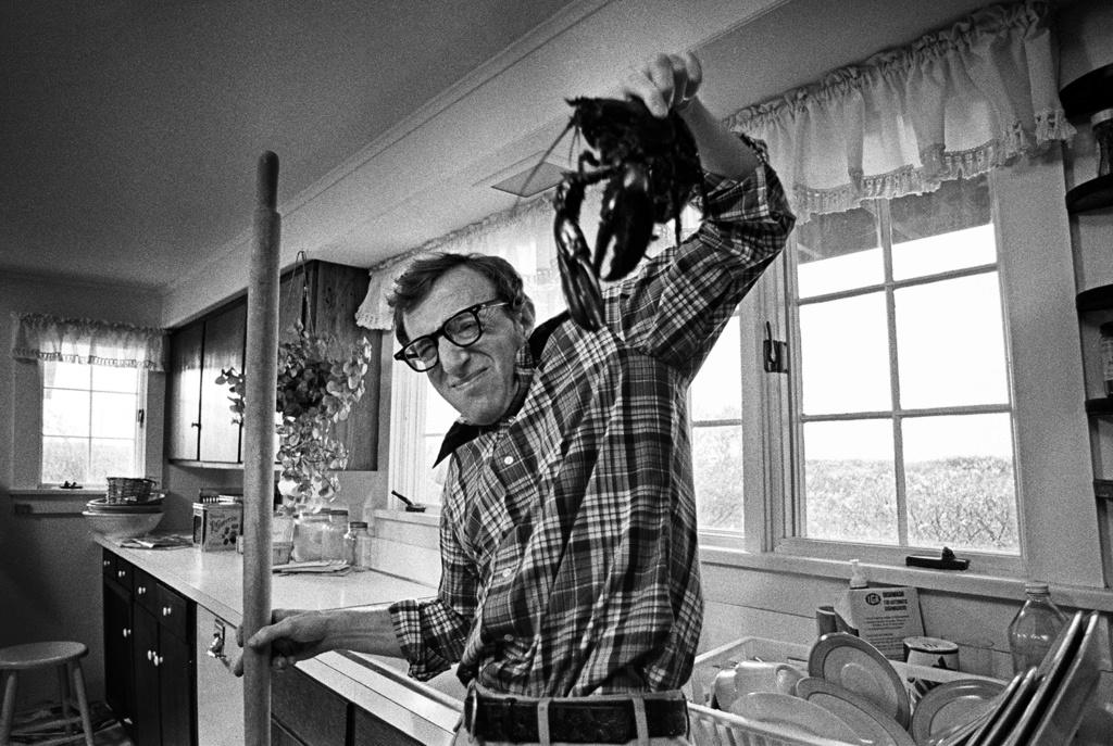 Woody Allen sondeo Woodya10