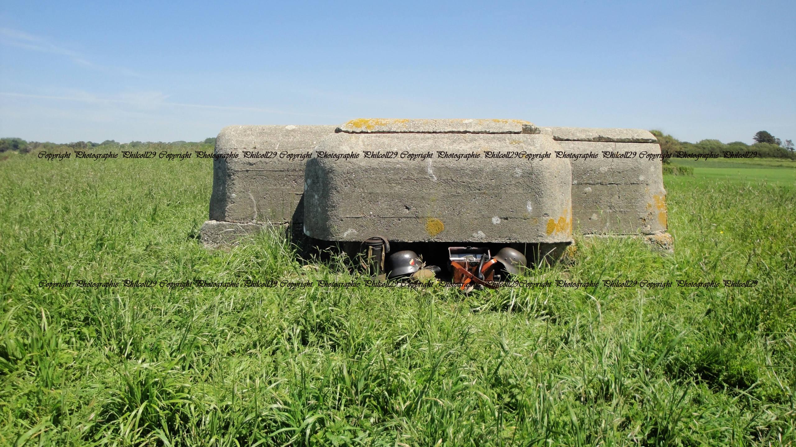Nature verte Bunker Allemand d'observation  1233