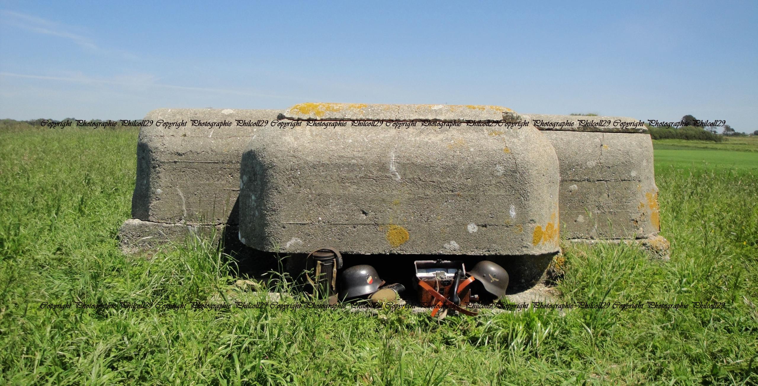 Nature verte Bunker Allemand d'observation  1334