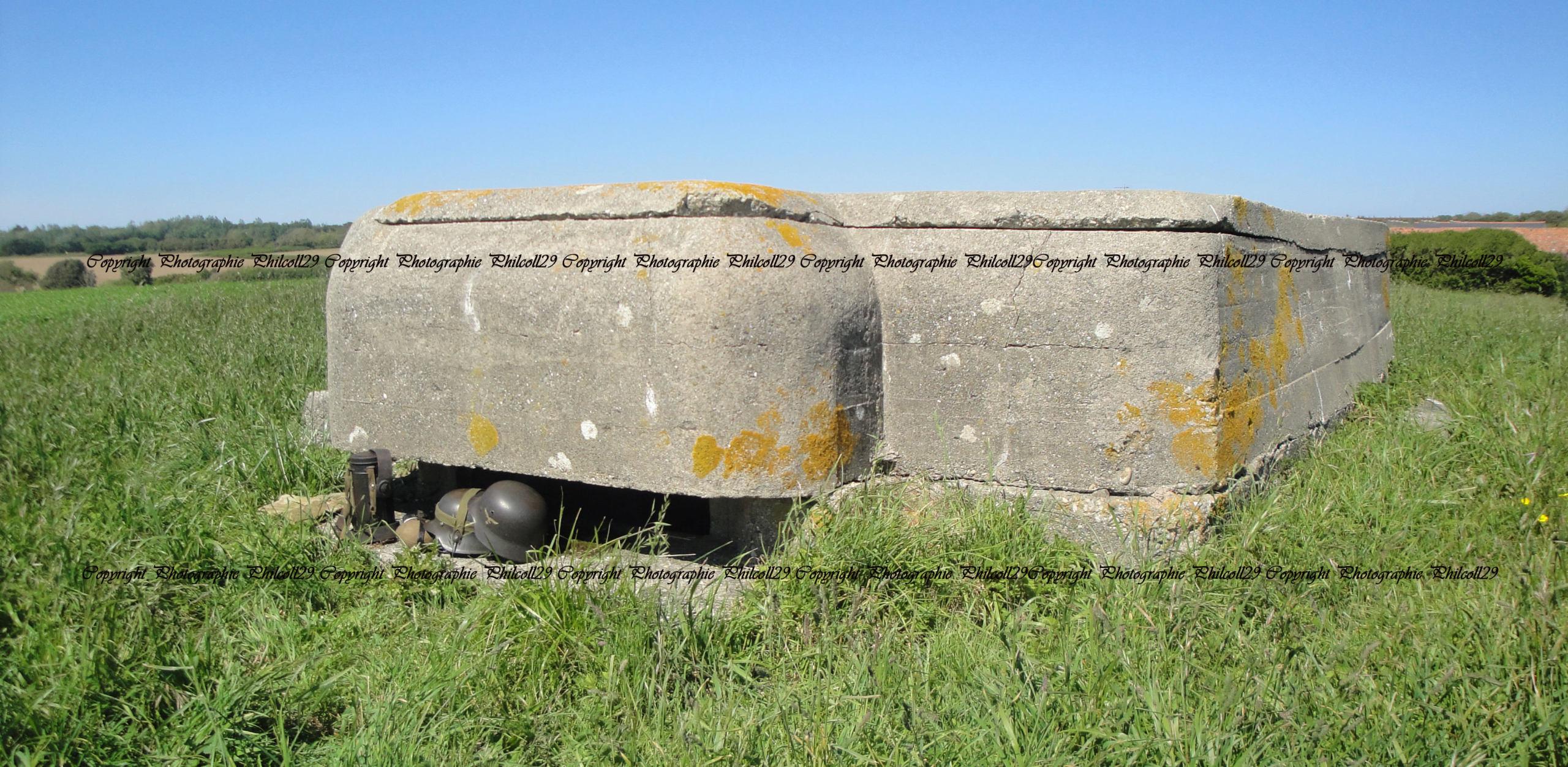 Nature verte Bunker Allemand d'observation  2026