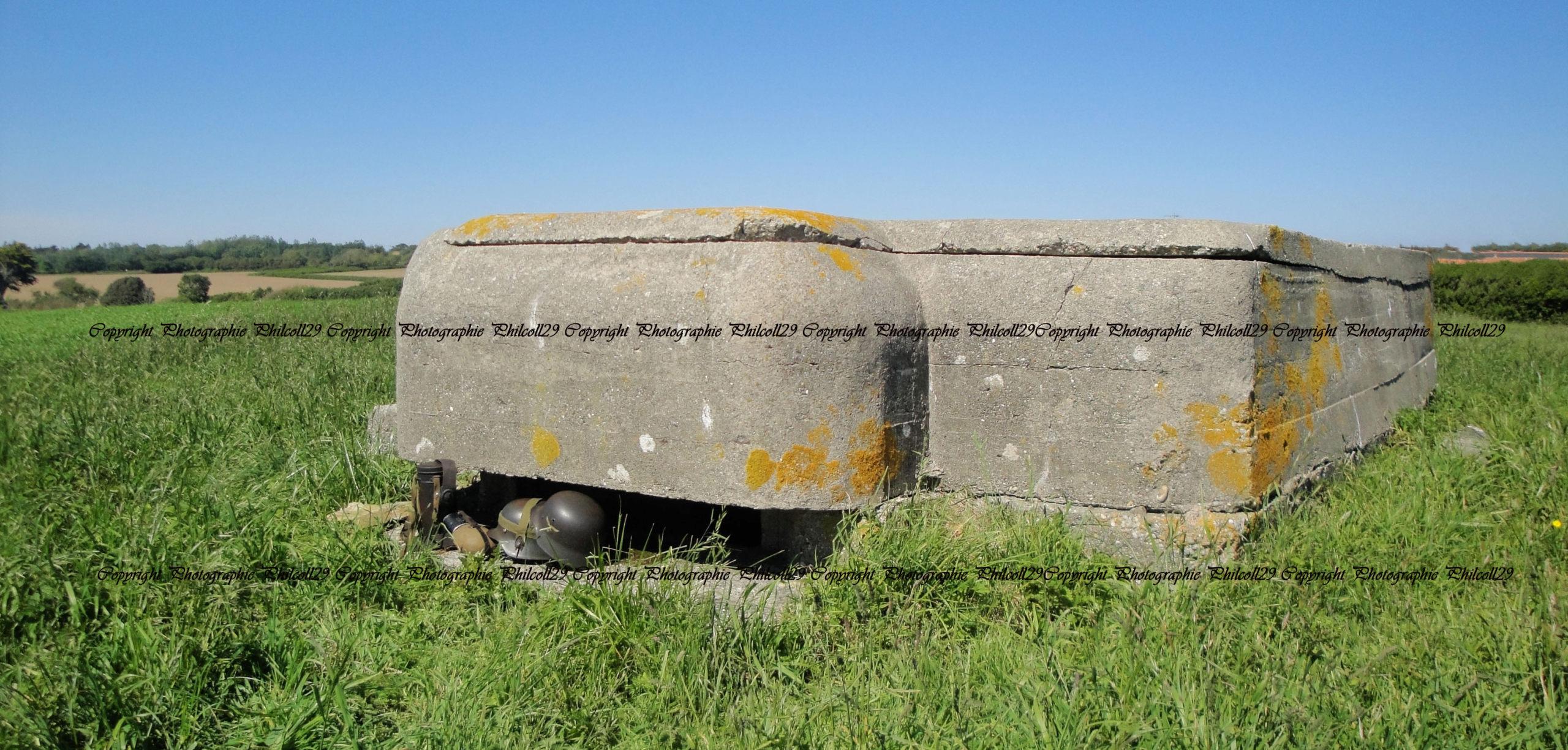 Nature verte Bunker Allemand d'observation  2128