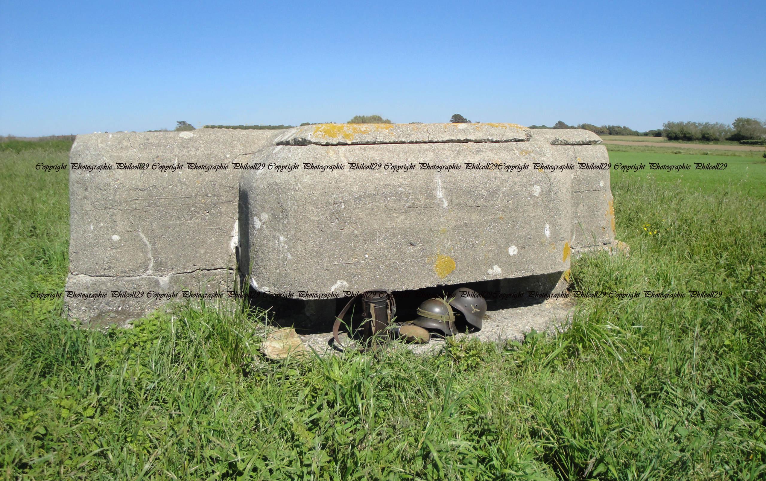 Nature verte Bunker Allemand d'observation  2226