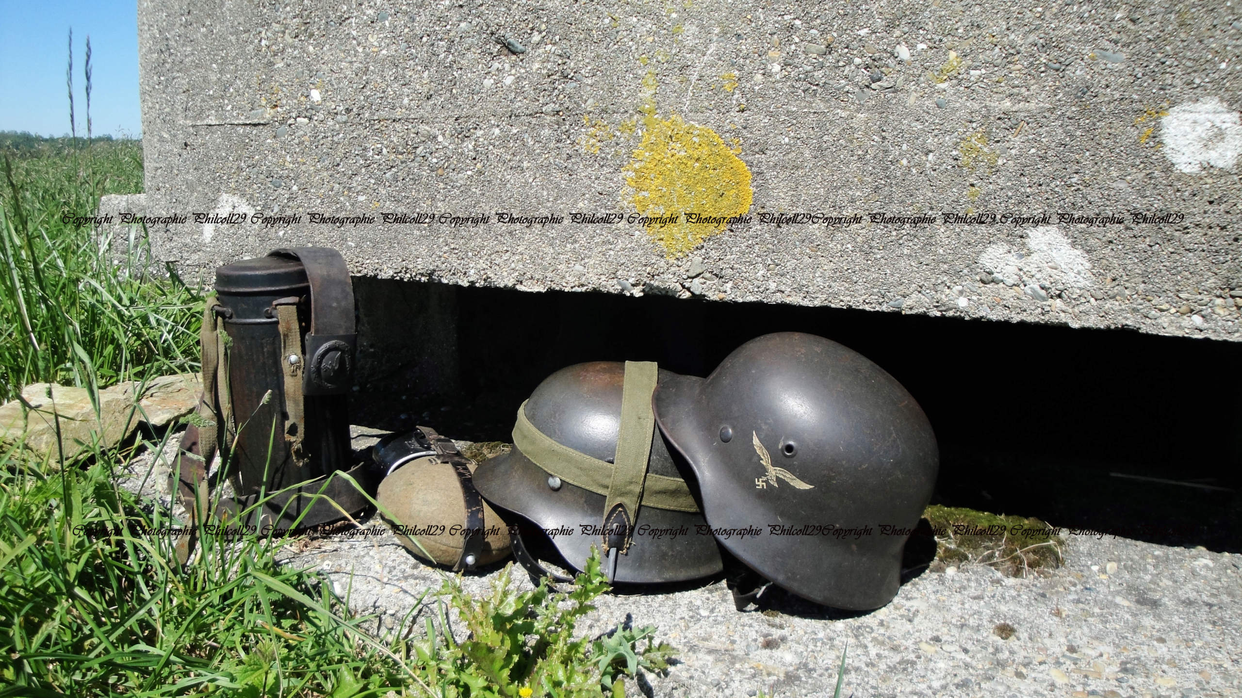 Nature verte Bunker Allemand d'observation  2423