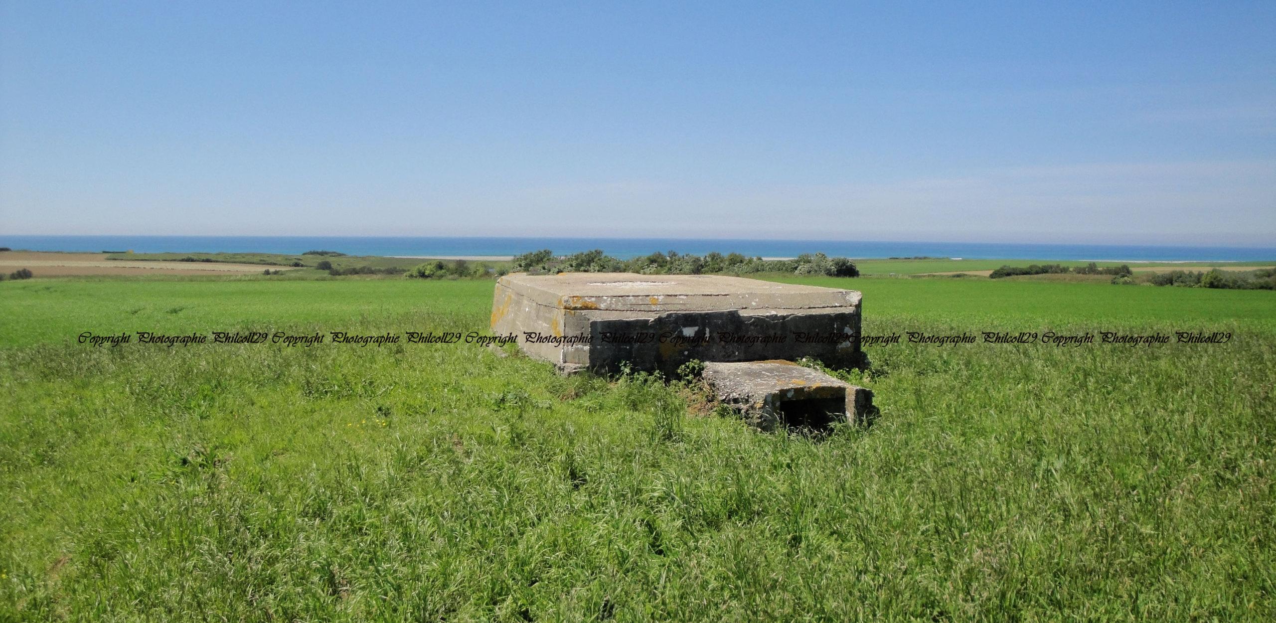 Nature verte Bunker Allemand d'observation  2819