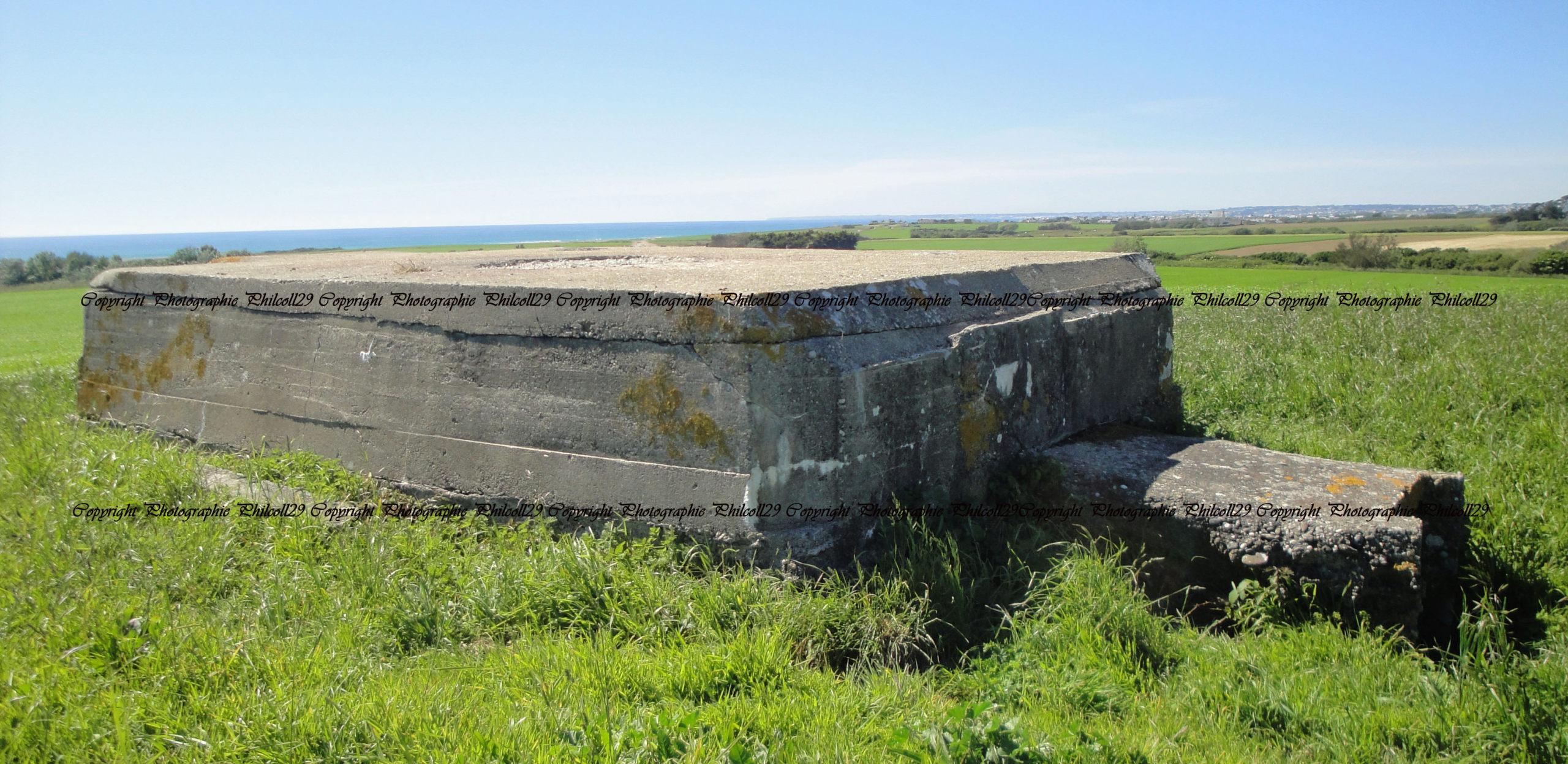 Nature verte Bunker Allemand d'observation  2919